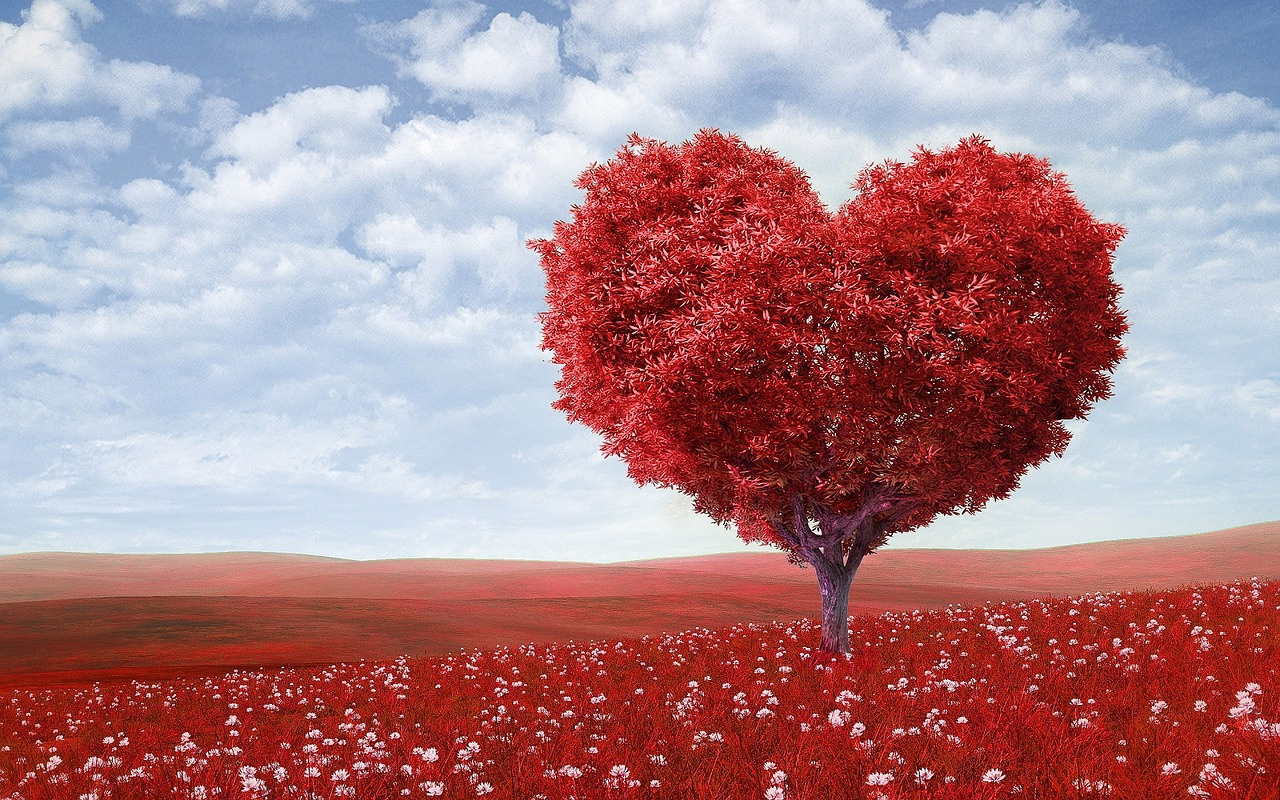 Valentine's idea: heart-shaped trees